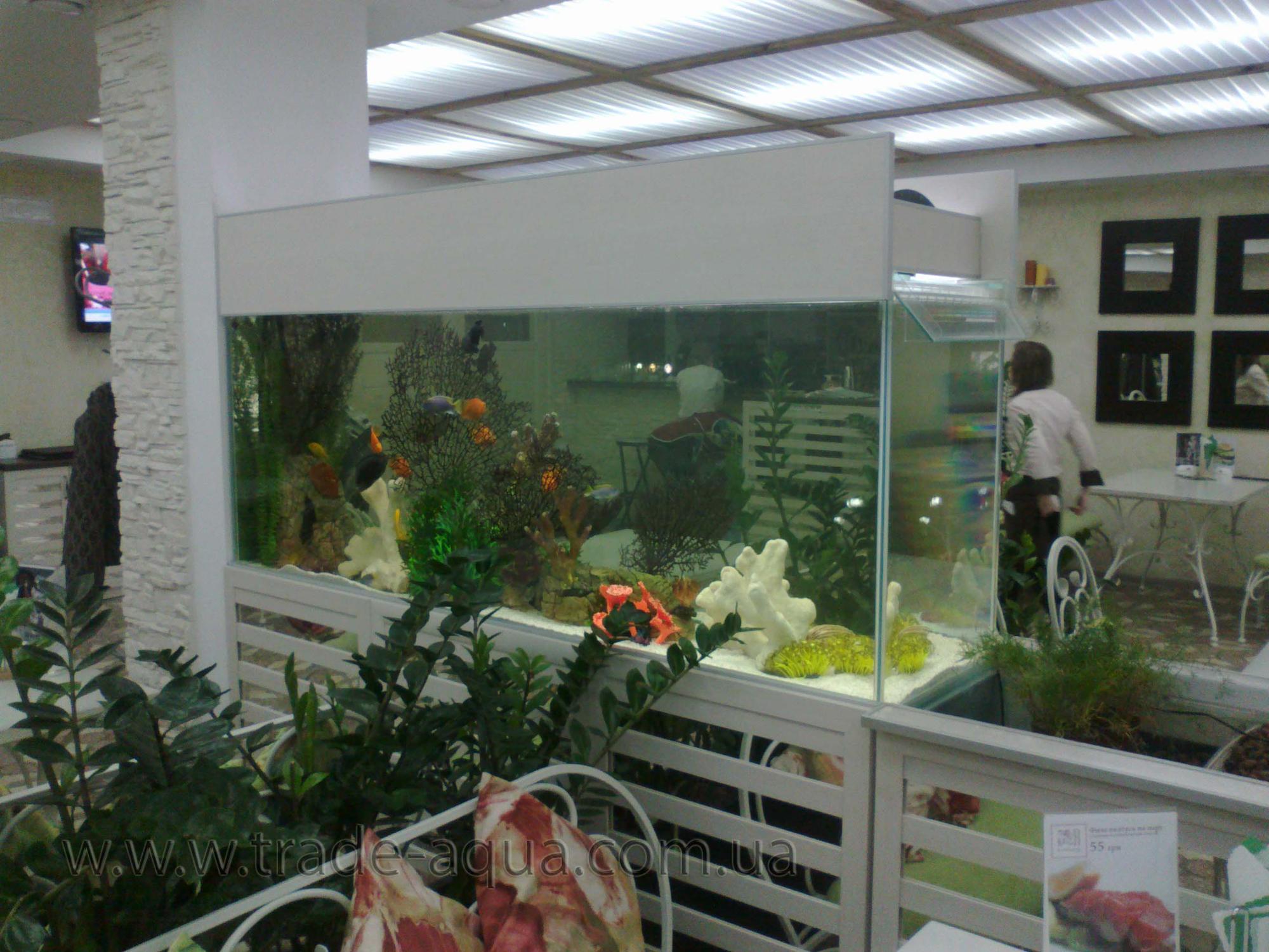 Akvarium-dlja-restorana