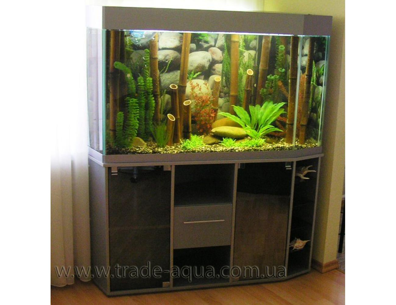 Variant-akvariuma-dlja-holla