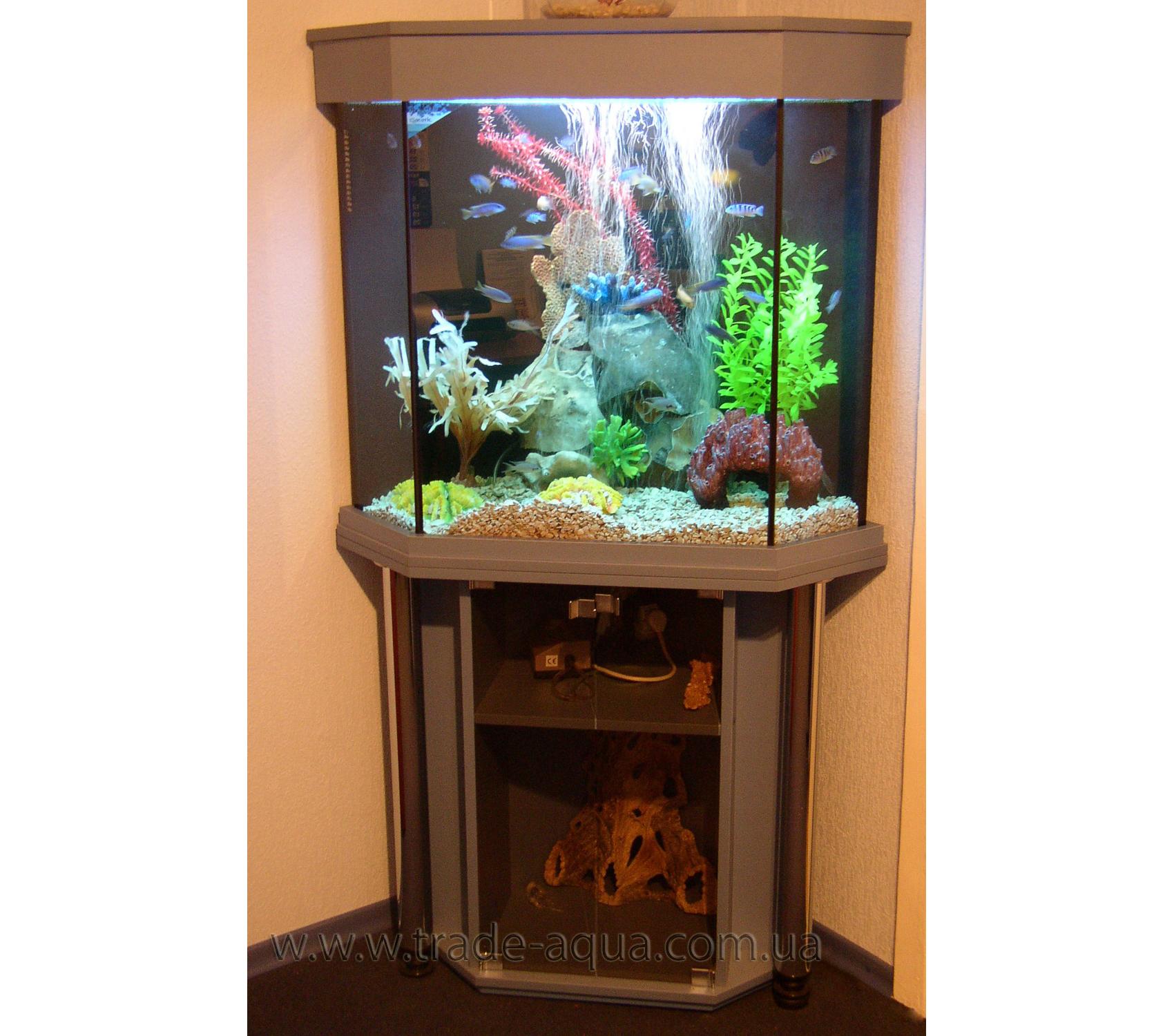 uglovoj-akvarium