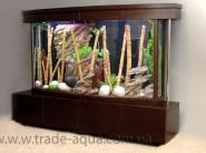Reshenie-akvariuma