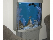Interernyj-akvarium
