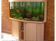 Primer-akvariuma