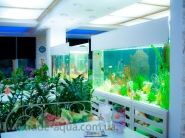 Dizajn-akvariuma