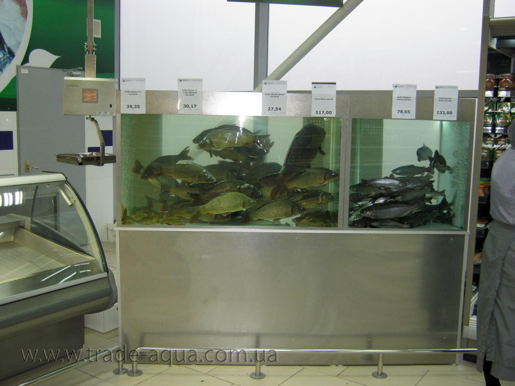 Dlja-prodazhi-zhivoj-ryby