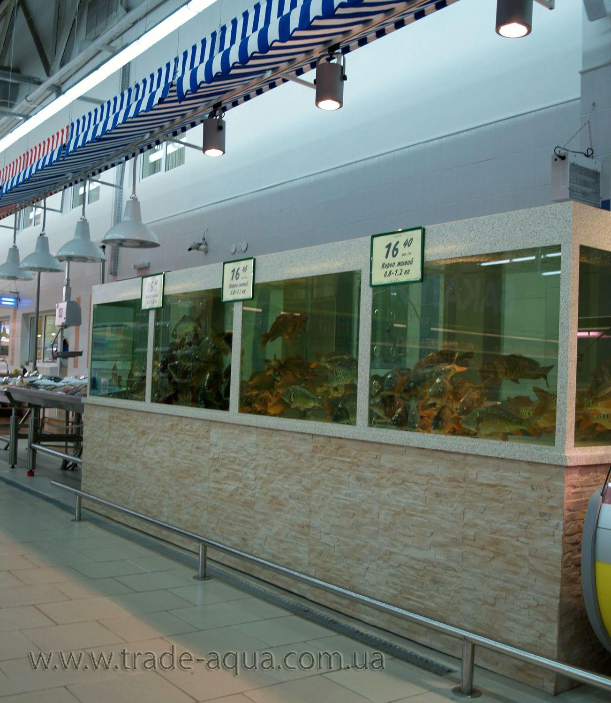 Akvarium-v-torgovom-zale