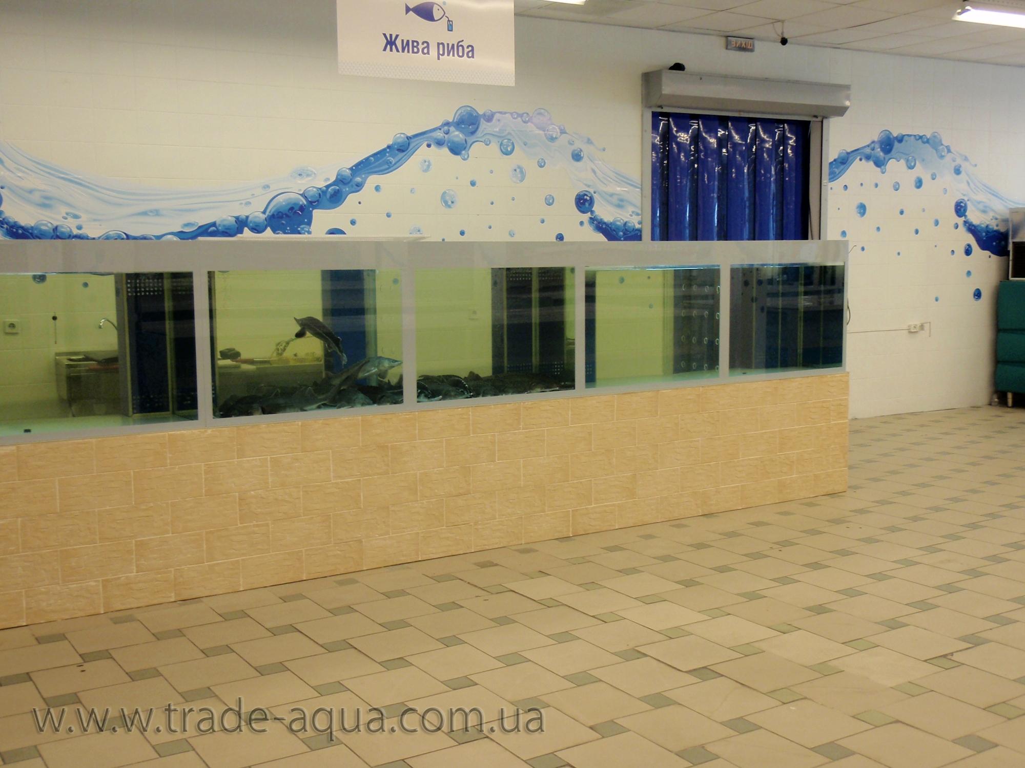 Akvarium-v-supermarkete