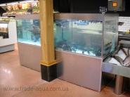 Akvarium-dlja-ryby