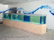 Oborudovanie-dlja-zhivoj-ryby