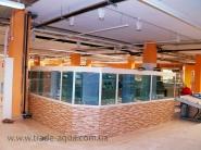 Torgovyj-akvariumnyj-kompleks